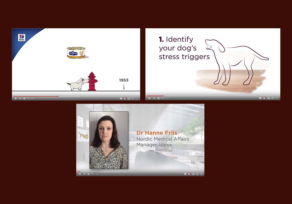 Hill's Innovation timeline – https://www.youtube.com/watch?v=34orcGmLcEA Hill's Manage Stress in Dogs – https://www.youtube.com/watch?v=9uvQu1tH7_k Hill's Stress: the Silent Killer – https://www.youtube.com/watch?v=YOI_RZz8MR8